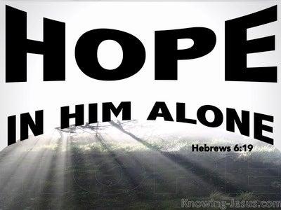 Hebrews 6:19 Hope In Him Alone (black)