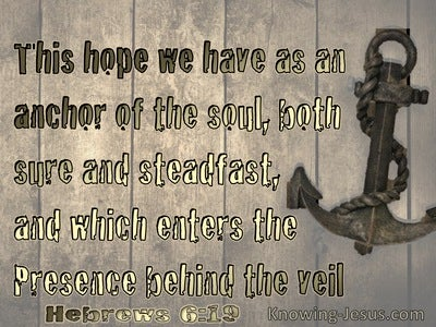 Hebrews 6:19 We Have This Hope As An Anchor To The Soul Stedfast And Sure (brown)