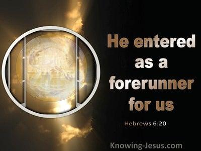 Hebrews 6:20 He Entered As Forefunner For Us (black)