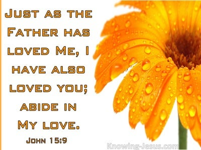 John 15:9  Abide In My Love (orange)