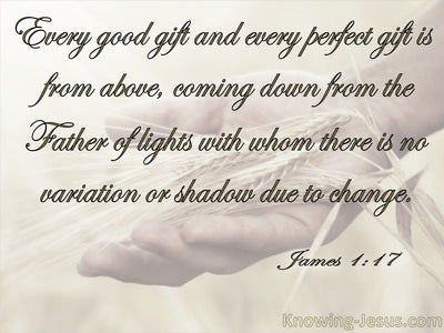 James 1:17 Every Good And Perfect Gift Is From Above (beige)