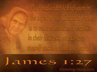 James 1:27 Pure And Undefiled Religion (brown)