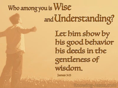 James 3:13 Who Is Wise And Understanding (orange)
