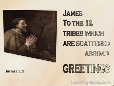 James 1:1 James To the 12 Tribes Which Are Scattered Abroad (pink)
