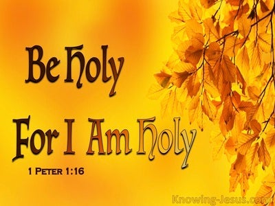 1 Peter 1:16 Be Holy For I Am Holy (yellow)