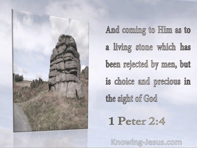 1 Peter 5:7 Cast All Your Cares On Him For He Cares For You