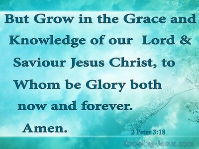 1 Peter 3:18 Faith and God's Grace (devotional)04:19 (aqua)