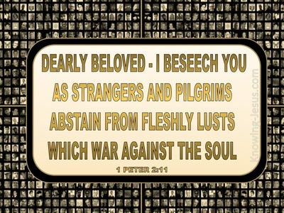 1 Peter 2:11 Abstain From Fleshly Lusts (gold)