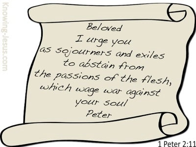 1 Peter 2:11 Abstain From Passions Of The Flesh (white)