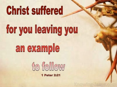 1 Peter 2:22 You Have Been Called For This Purpose (beige)