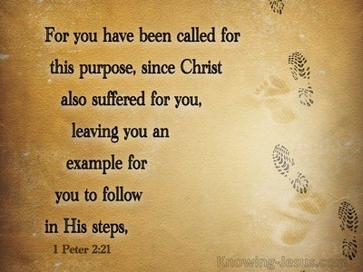 1 Peter 2:22 You Have Been Called For This Purpose (brown)