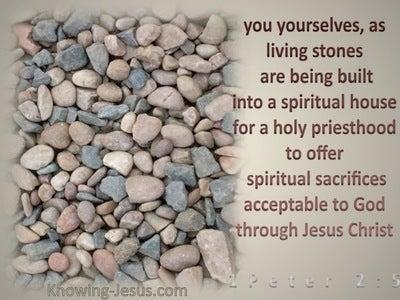 1 Peter 2:5 A Spiritual House (beige)
