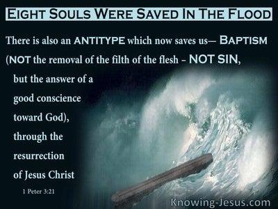 1 Peter 3:21 The A Good Conscience Towards God (aqua)