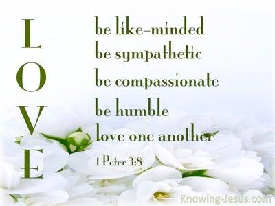 25 Bible verses about Brotherhood