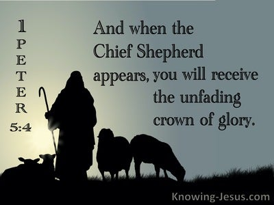 1 Peter 5:4 When The Chief Shepherd Appears (black)