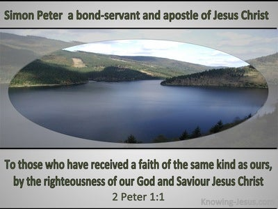 2 Peter 1:1 Like Precious Faith (gray)
