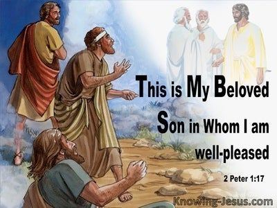 2 Peter 1:17 This Is My Beloved Son In Whom I Am Well Pleased (brown)
