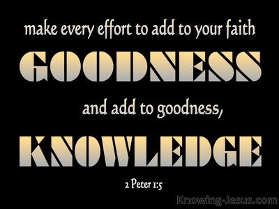 2 Peter 1:5 Add To Your Faith Goodness (black)