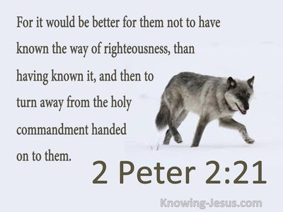 2 Peter 2:21 Better Not To Have Known Way Of Righteousness (gray)