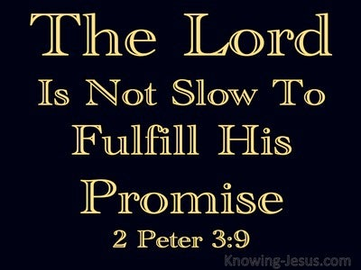 2 Peter 3:9 The Lord Is Patient (black)