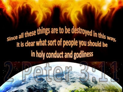 2 Peter 3:11 Live In Holy Conduct And Godliness (brown)