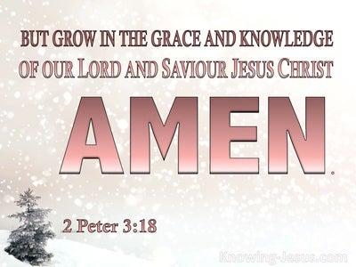 2 Peter 3:18 Long Term Plan (devotional)11:05 (pink)