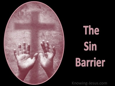 The Sin Barrier (devotional) (pink)
