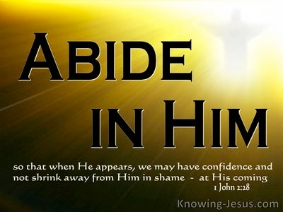 1 John 2:28 Little Children, Abide In Him (white)