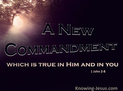 1 John 2:8 A New Commandment (pink)