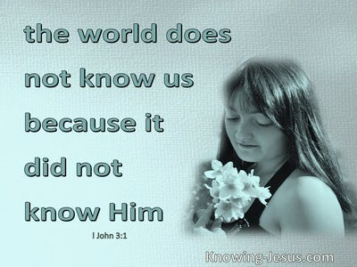 1 John 3:1 What Love That We Are Called Children Of God (aqua)