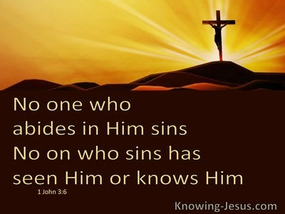1 John 3:6 No One Who Abide In Him Sins (brown)