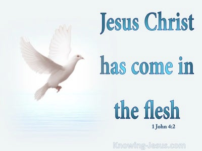 1 John 4:2 Jesus Christ Has Come In The Flesh (aqua)
