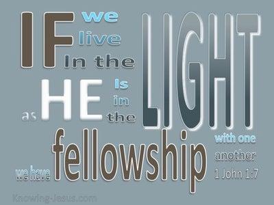 1 John 1:7 Live In The Light (gray)