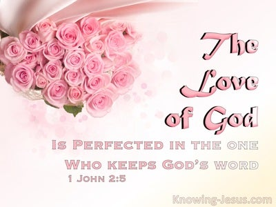 1 John 2:5 The Love Of God Is Perfected (pink)