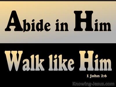 1 John 2:6 Abide In Him Walk Like Him (black)