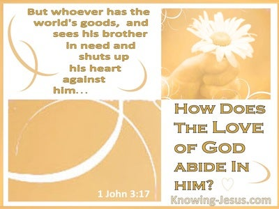 1 John 3:17 How Does God's Love Abide In Him (white)