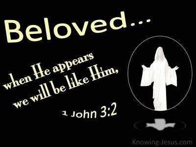 1 John 3:2 When He Appears We Shall Be Like Him (black)