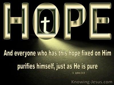 1 John 3:3 Hope Fixed on Him Purifies As He Is Pure (yellow)