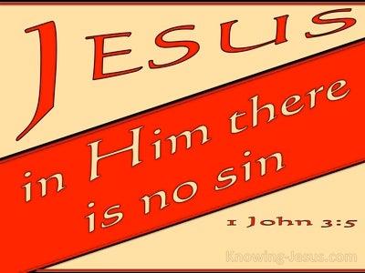 1 John 3:5 He Appeared To Take Away Sins (red)