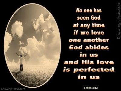 1 John 4:12 No One Has Seen God (black)