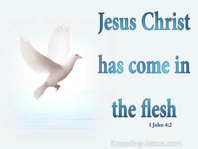 1 John 4:2 Jesus Christ Has Come In The Flesh (aqua)