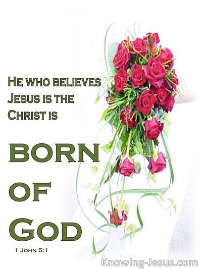 1 John 5:1 Child Of God (green)