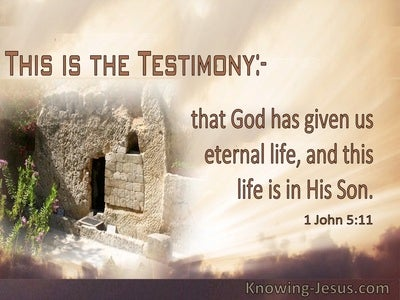 1 John 5:11 God Has Given Us Eternal Life In His Son (windows)07:02