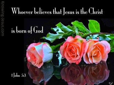 1 John 5:3 Born Of God (black)