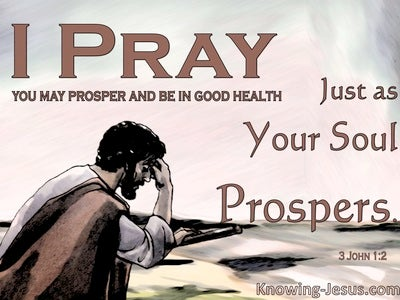 3 John 1:2 May You Prosper And Be In Good Health (brown)