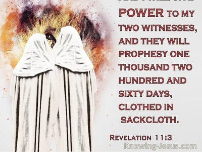 Revelation 11:3 Power To My Two Witnesses Who Will Prophesy 1260 Days (red)