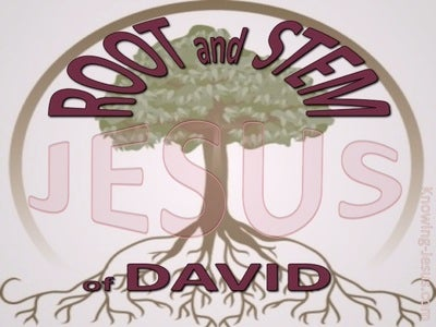 Revelation 22:16 Root And Stem Of David (maroon)