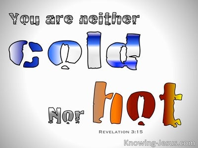 Revelation 3:15 You Are Not Hot Nor Cold (gray)