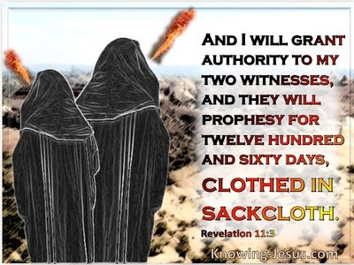 Revelation 11:3 My Two Witnesses Will Prophesy For 1260 Days Wearing Sackcloth (blue)