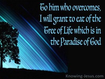 Revelation 2:7 He Who Has An Ear Let Him Hear (black)